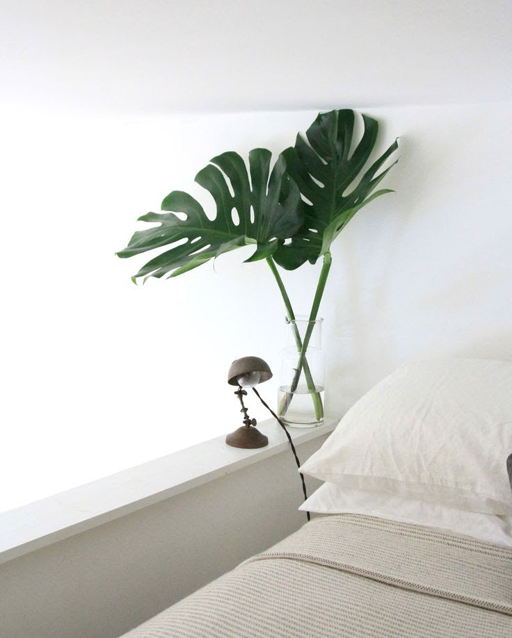 Trending on Gardenista: Top 5 Posts This Week (Plus a Chance to Win $100): Remodelista