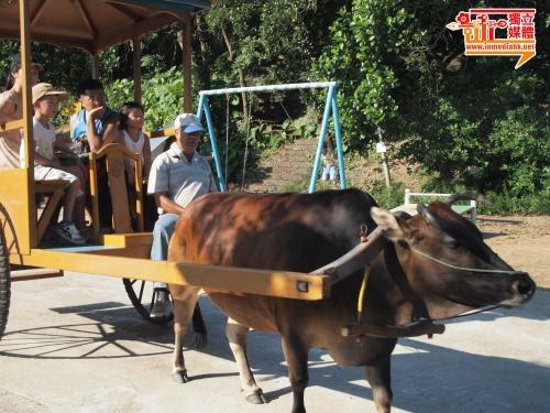 漁護署:大棠生態園無虐待動物 正跟進需否領牌