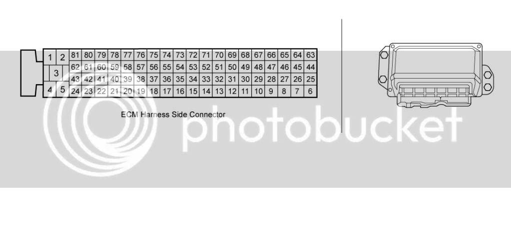 03 Tiburon Wiring Diagram Diagram Base Website Wiring Diagram Hrdiagramlabels Agorawebtv Fr
