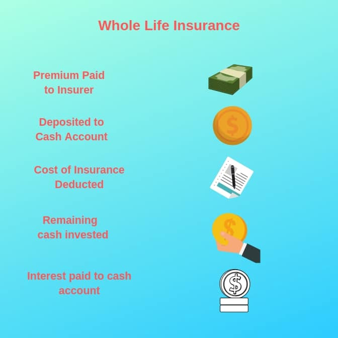 How Does Life Insurance Work? - Ogletree Financial