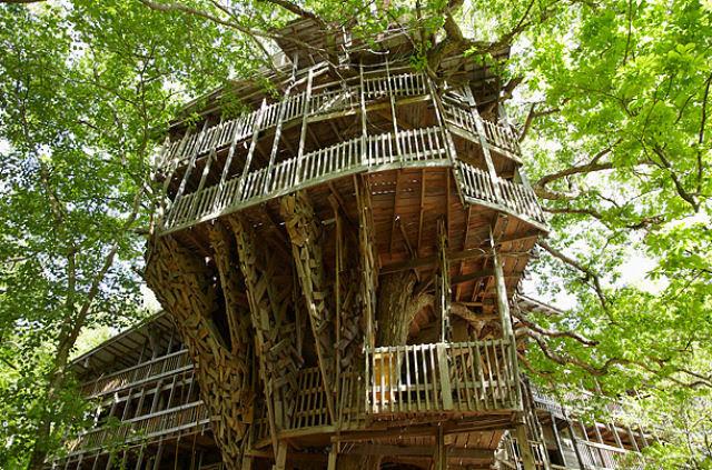 A maior casa da árvore do mundo 09