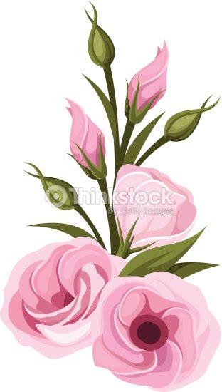 ピンクのトルコキキョウ花 ベクトルイラスト ベクトルアート Thinkstock