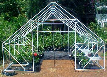 Hidden Valley Hibiscus Build Your Own Greenhouse