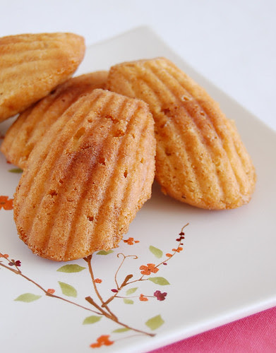 Almond praliné madeleines / Madeleines com praliné de amêndoas