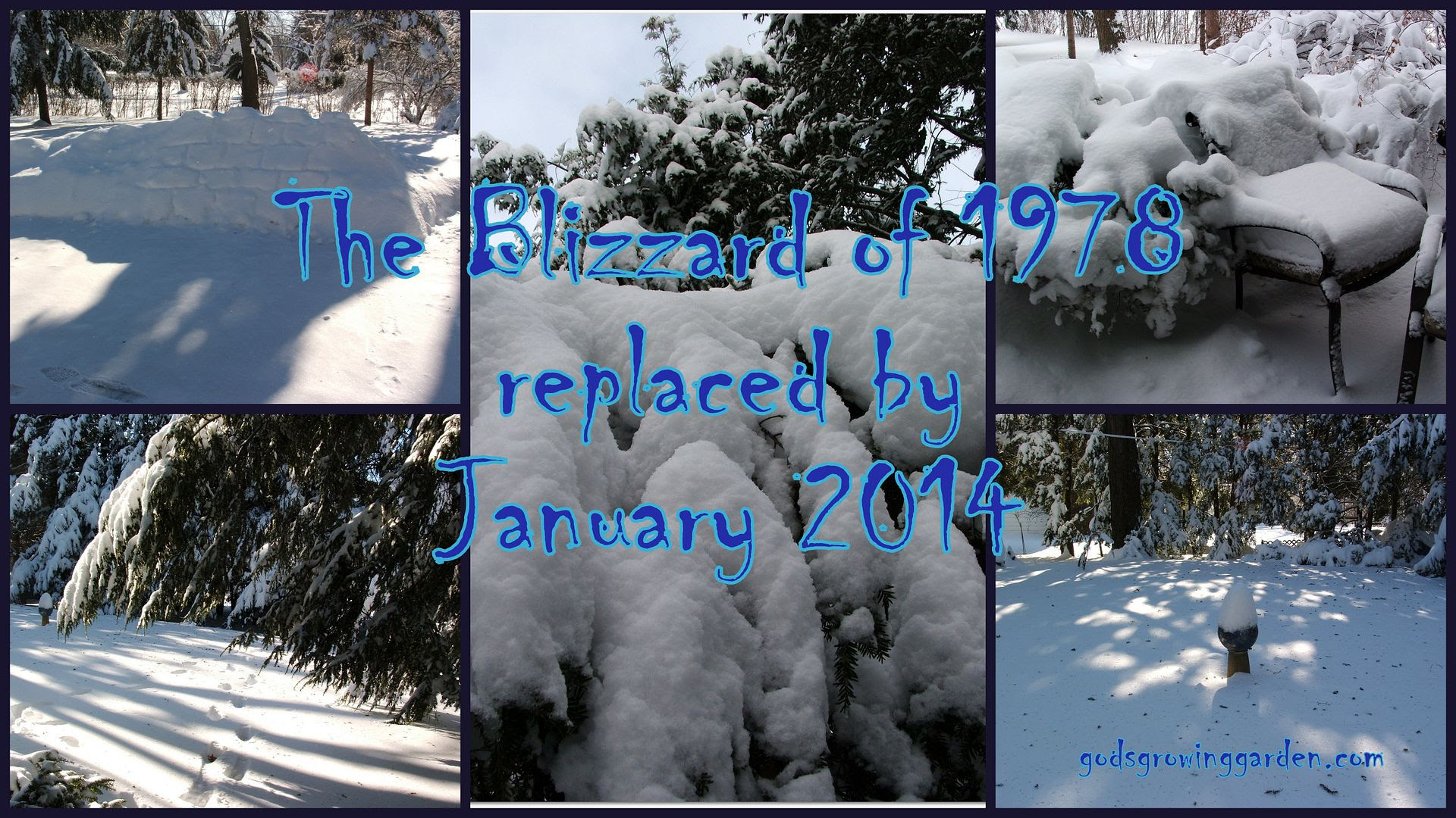 Blizzard of 78 Replaced by Angie Ouellette-Tower for godsgrowinggarden.com photo 2014-01-06_zpsd81356d3.jpg
