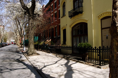 Early Spring, Brooklyn