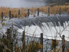 Roundwood Reservoir