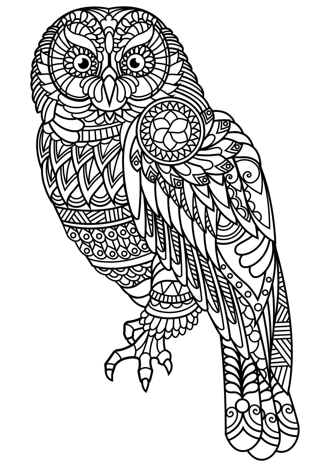 Adult Wolf Coloring Pages at GetColorings.com | Free ...