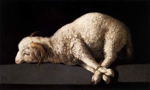passover2blamb
