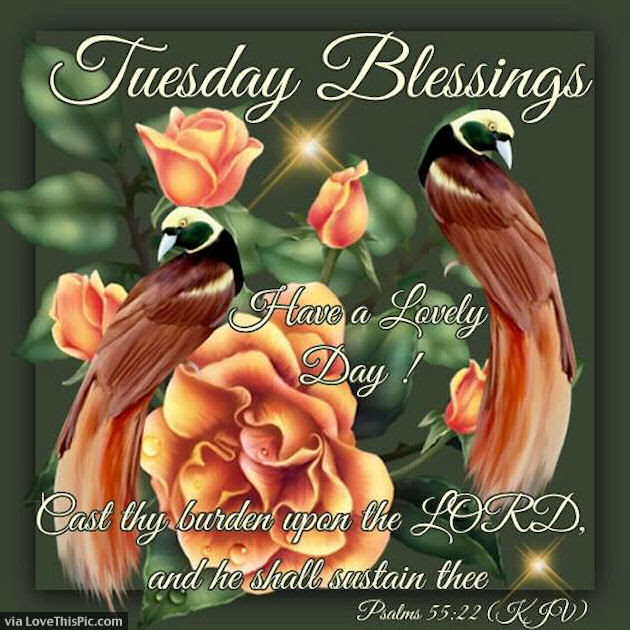 Have A Lovely Tuesday God Bless Pictures Photos And Images For