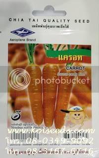 เมล็ดพันธุ์แครอท ตราเรือบิน