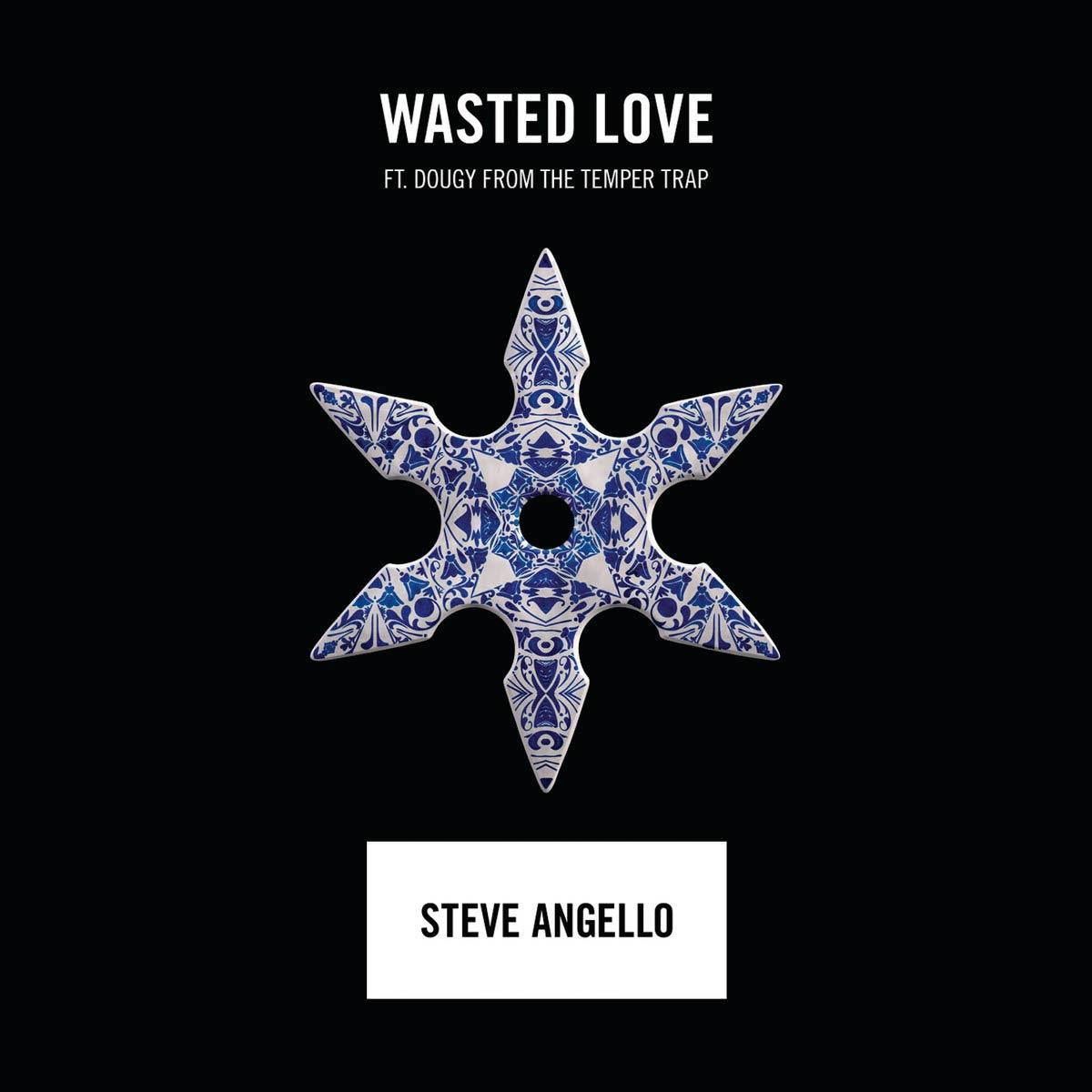 Steve Angello con Dougy: Wasted love - la portada de la canción