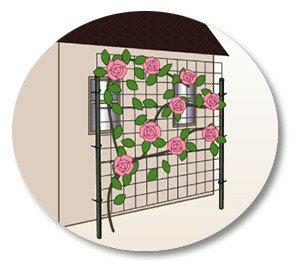 カラマリーナVG(シルバーベーシック) 標準セット つるバラのあるガーデンに!