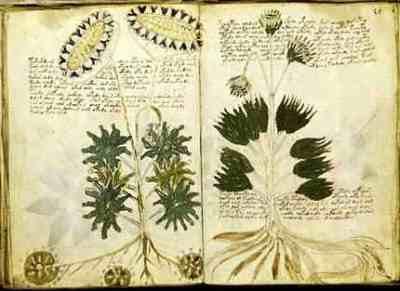 Image result for soyga manuscript