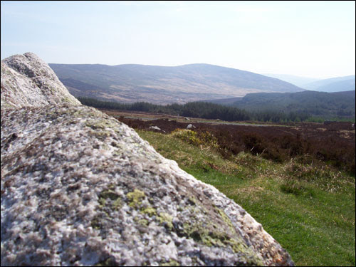 Wicklow Gap, May 2008