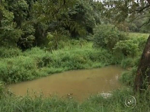 Implantação de terreno perto de rio preocupa ambientalistas (Foto: Reprodução/TV TEM)