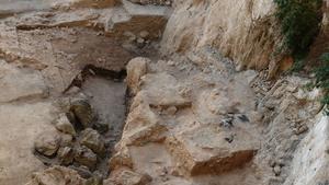 Study: 50,000-year-old poop proves Neanderthals ate their veggies