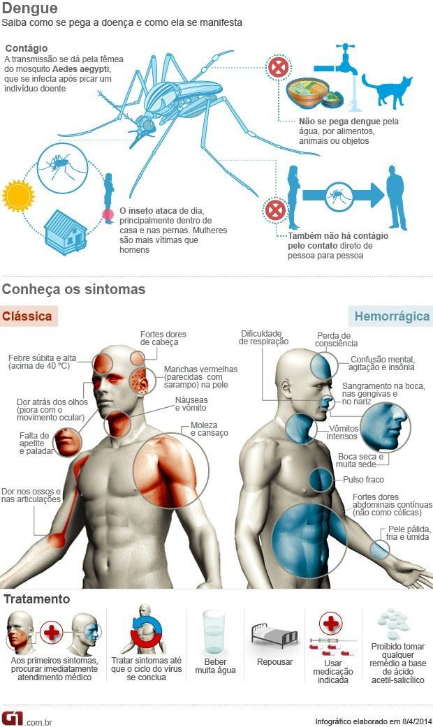 Infográfico detalha como a dengue age no corpo (Foto: G1)