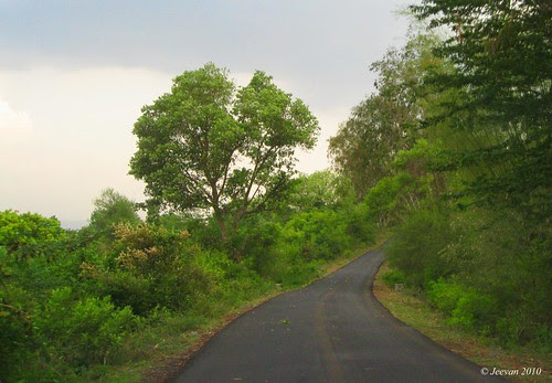 way to yercaud