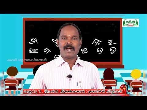 11th Tamil இலக்கணம் இயல் 2 பகுதி 6 Kalvi TV