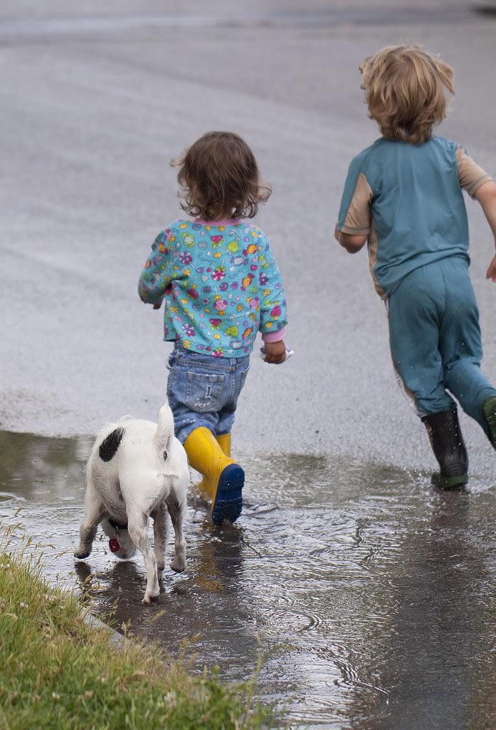 puddle pals