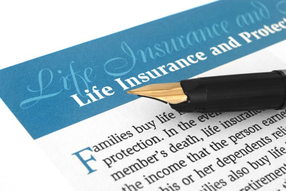 Article: What Is Variable Life Insurance? : What Is ...