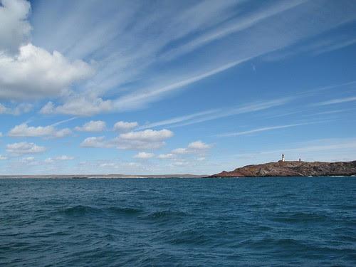 Isla Penguino