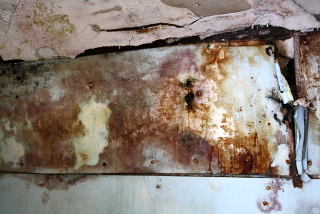 Mould continues to spread, to no end.
