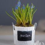 inceputul-promitator-aranjament-floral-pe-suport-de-vas-ceramic