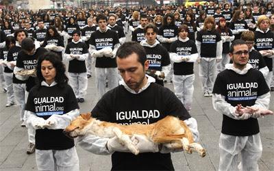 Los activistas en la Puerta del Sol, esta mañana.-EFE/Kote Rodrigo