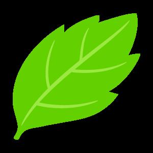 葉っぱ 花植物イラスト Flode Illustration フロデイラスト