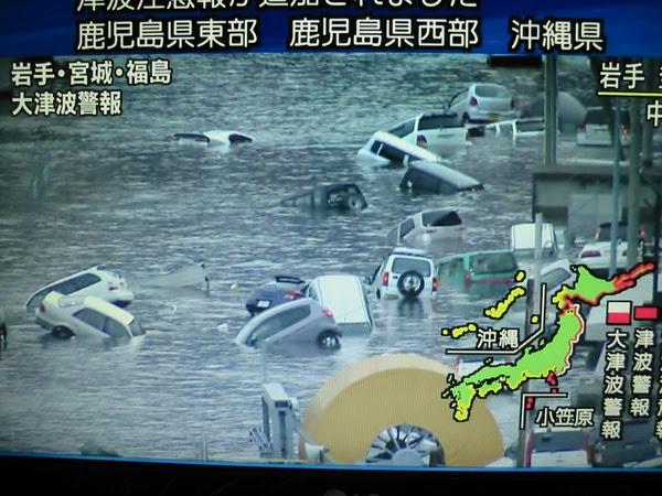 Tsunami reports on Japanese TV