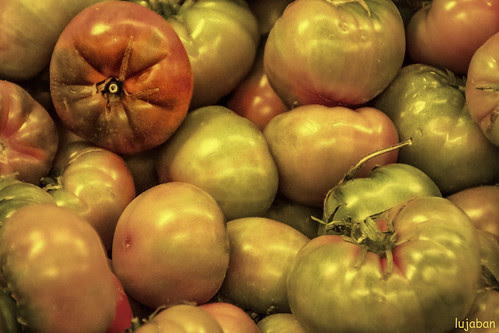 Tomatoes by lujaban