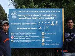 Tempat Penguin Parade, Philip Island, Australia