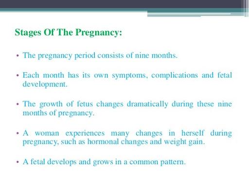 stages of pregnancy slideshare - Blackmores Pregnancy