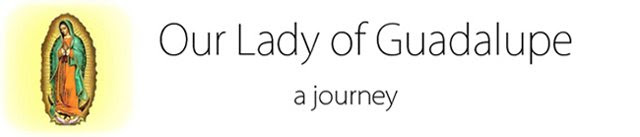 Our Lady of Guadalupe: A journey