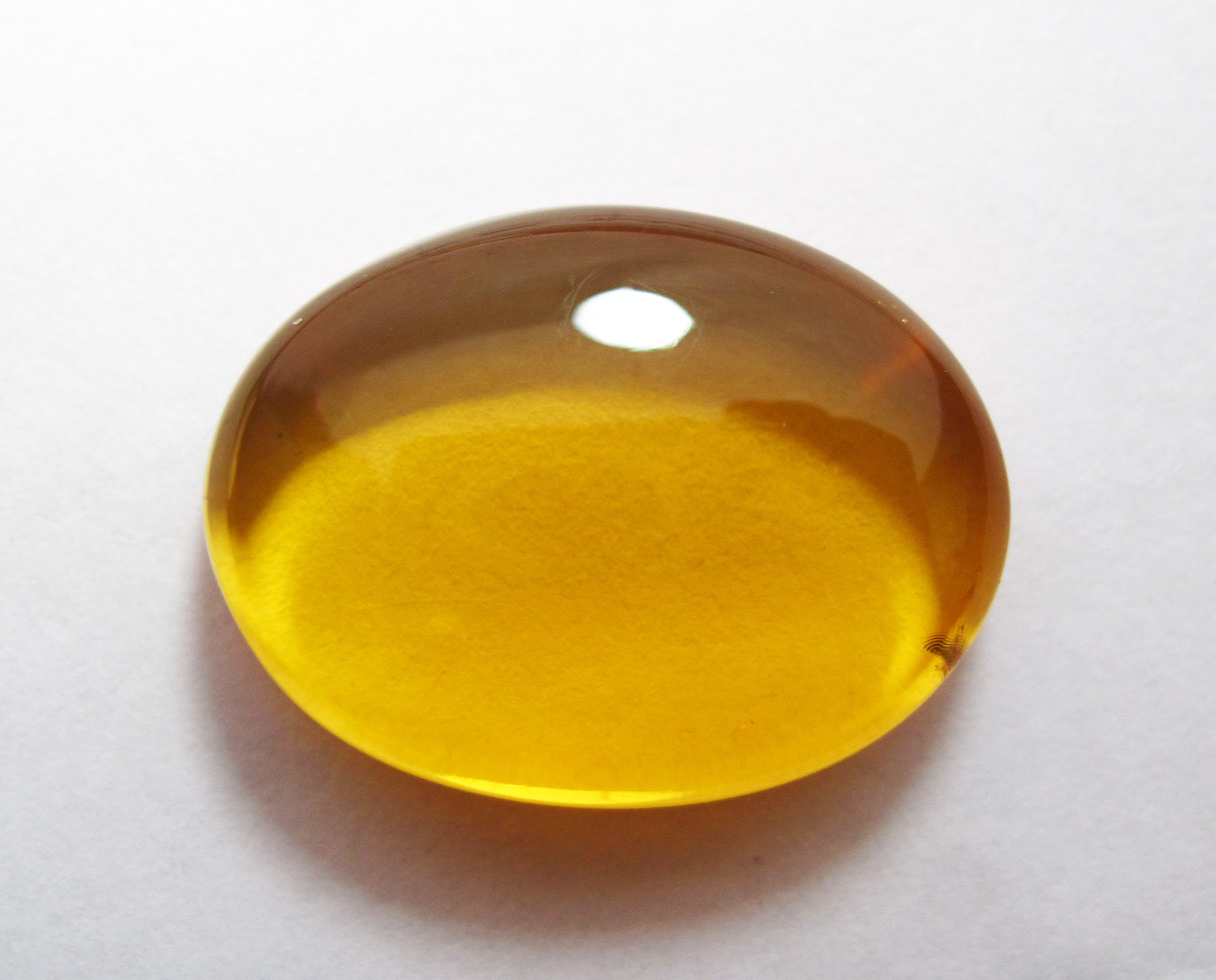 Oligo-miocene Chiapas amber from Mexico
