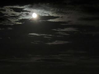 Moonlight - July 22