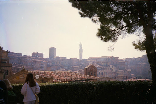 Siena. One May morning in 1995