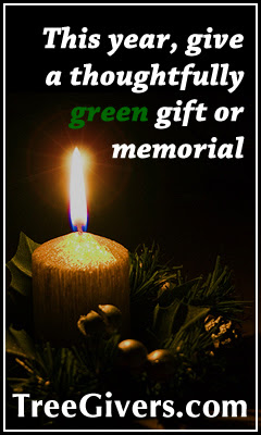 Plant a thoughtful seasonal memorial this year