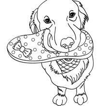 7100 Coloring Pages Cute Dog Pictures