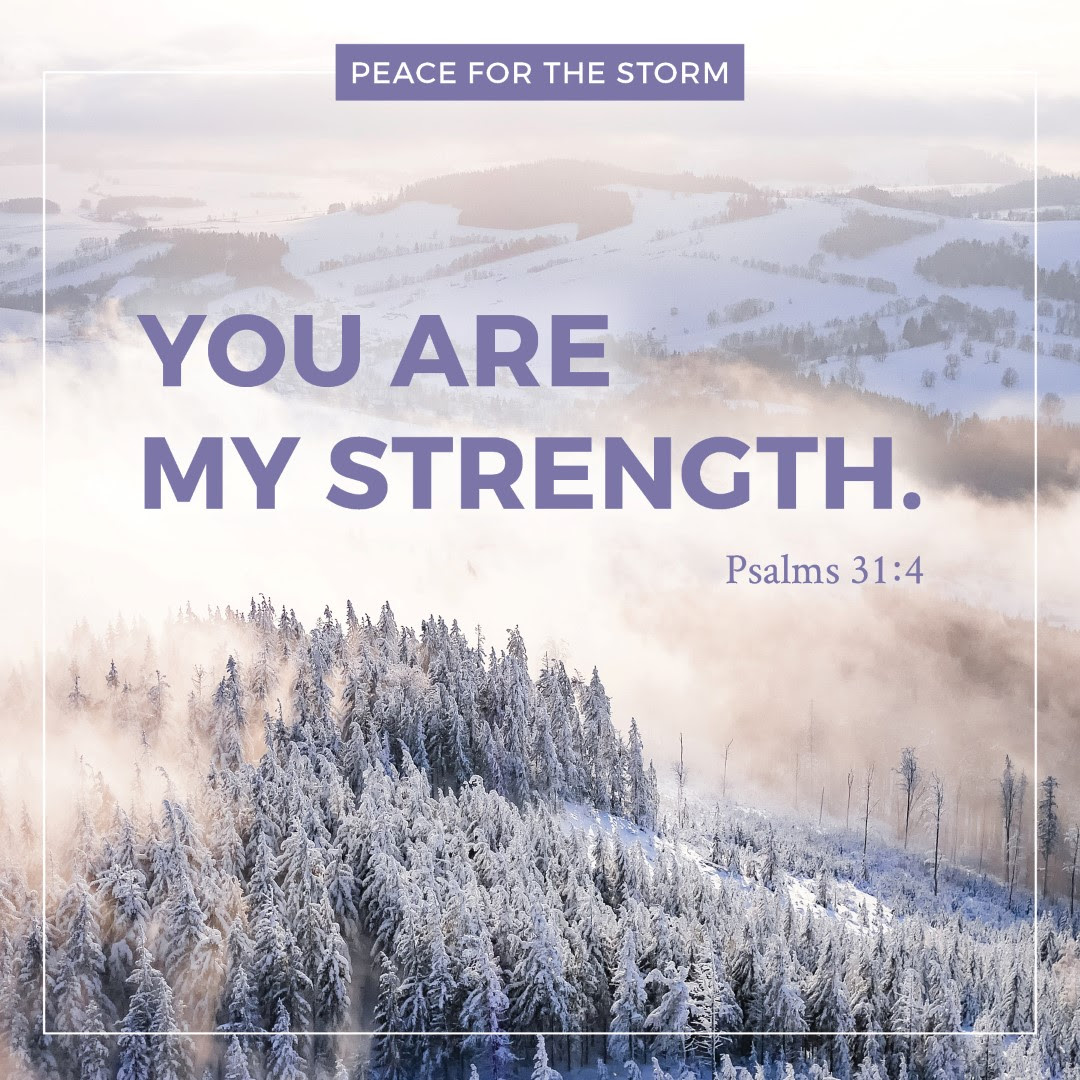 Peace For The Storm Page 12 Of 30 Inspiration To Rise Above The