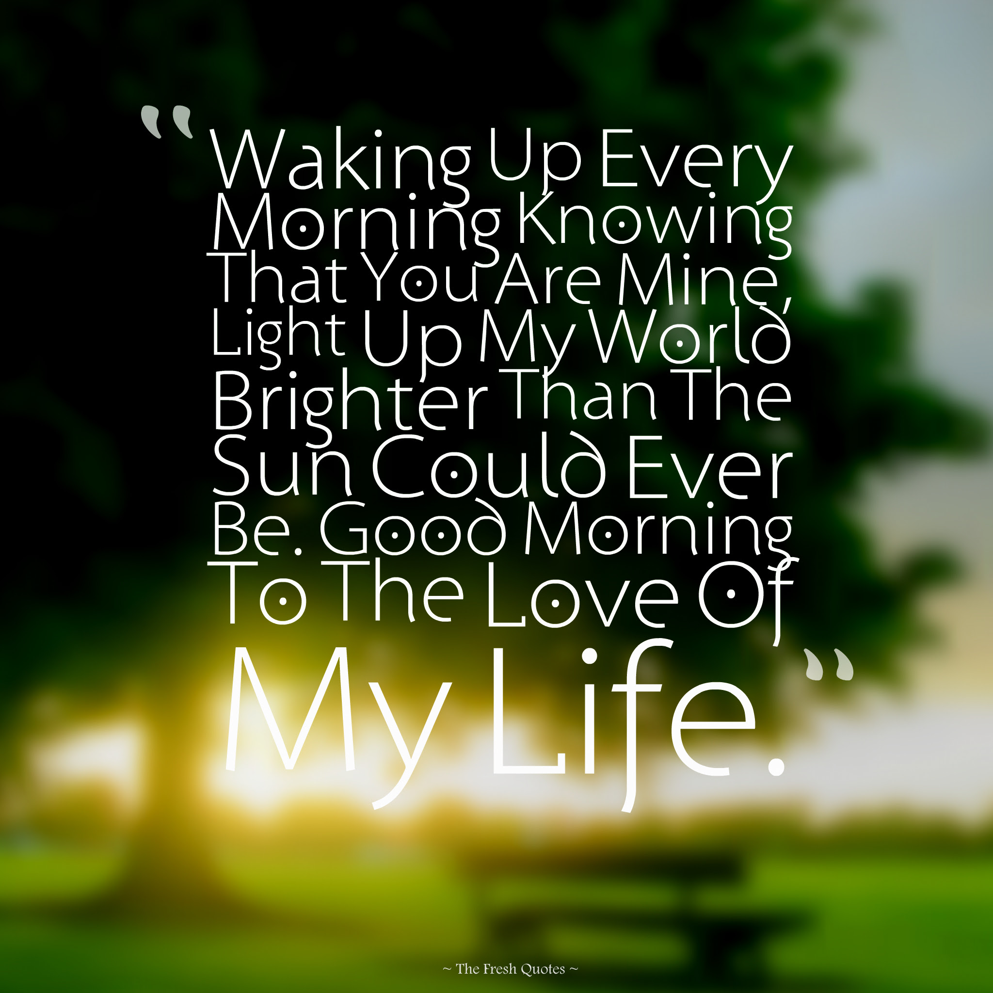 Quotes About Love In Morning 127 Quotes