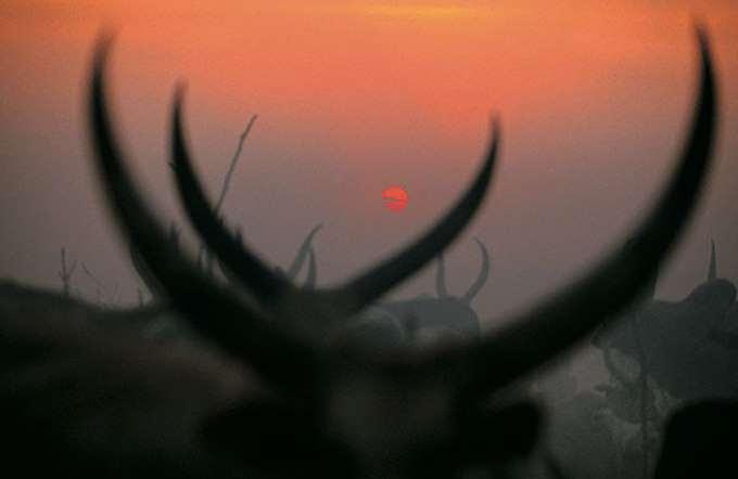 dinka-people-southern-sudan-angela-fisher-carol-beckwith-2