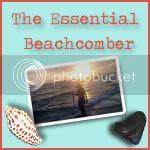 The Essential Beachcomber