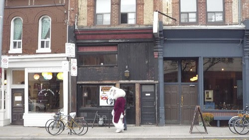 rabit saunters down Ossington