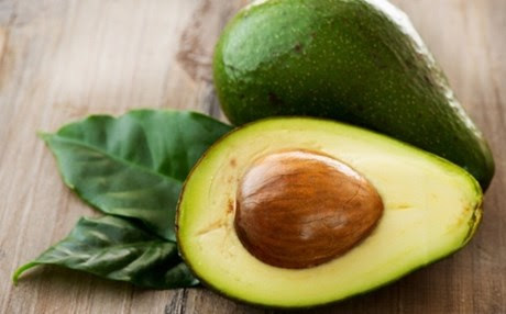 Avocado_b2
