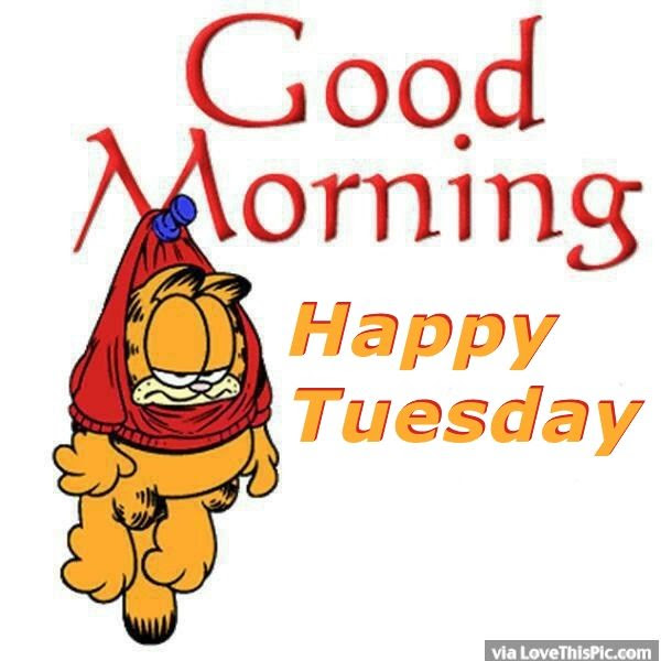 Happy Tuesday Clipart Free Download Best Happy Tuesday Clipart On