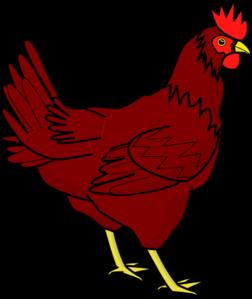 vector ayam betina vecteur l vector ayam betina vecteur l