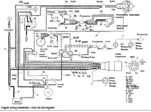 Bayliner Capri Wiring Diagram